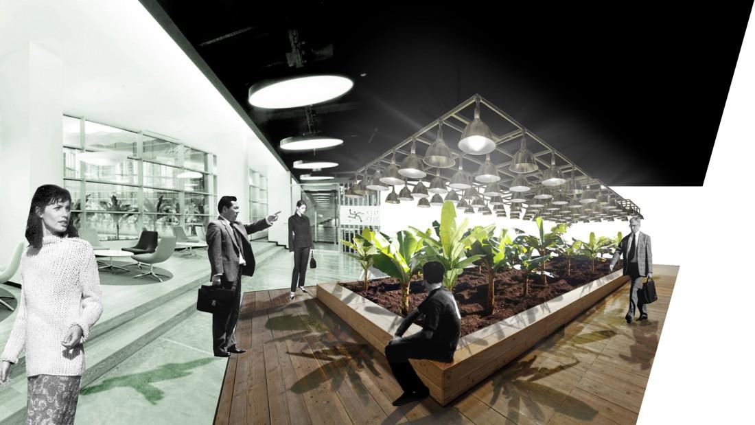 aménagement bureaux entreprises plantations